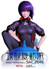 Ghost in the Shell : SAC_2045